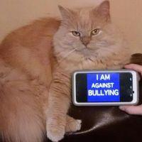 World-Day-of-Bullying-Prevention-2014-53.jpg